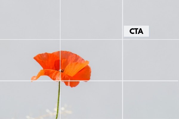 homepage image with optimized rule of thirds call-to-action